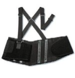 Ergodyne Proflex 2000SF Back Support